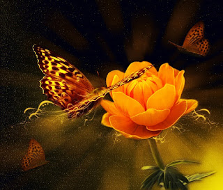 Gambar Background Motif Bunga Untuk Update status Romantis