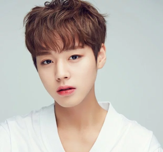 Wanna one, biodata wanna one, biodata member wanna one, wanna one profile, foto wanna one, 워너원, foto park jihoon, foto park jihoon wanna one,