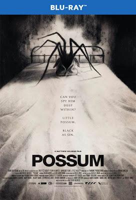 Possum 2018 BD25 Sub