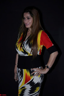 Pallavi Jaikishan Celete 45year In Industry witha beautiful Fashion Show 48.JPG