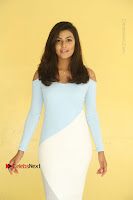 Anisha Ambrose Latest Pos Skirt at Fashion Designer Son of Ladies Tailor Movie Interview .COM 0700.JPG