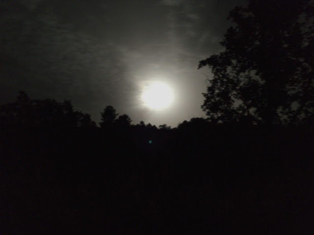 グルプルニマの満月の写真