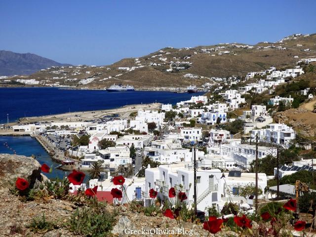Panorama Mykonos. Czerwone maki na tle białych greckich domków, spokojnego morza oraz bezchmurnego nieba.