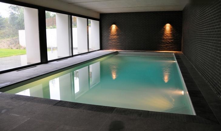 Piscinas y spas las piscinas interiores for Piscinas en interiores de casas