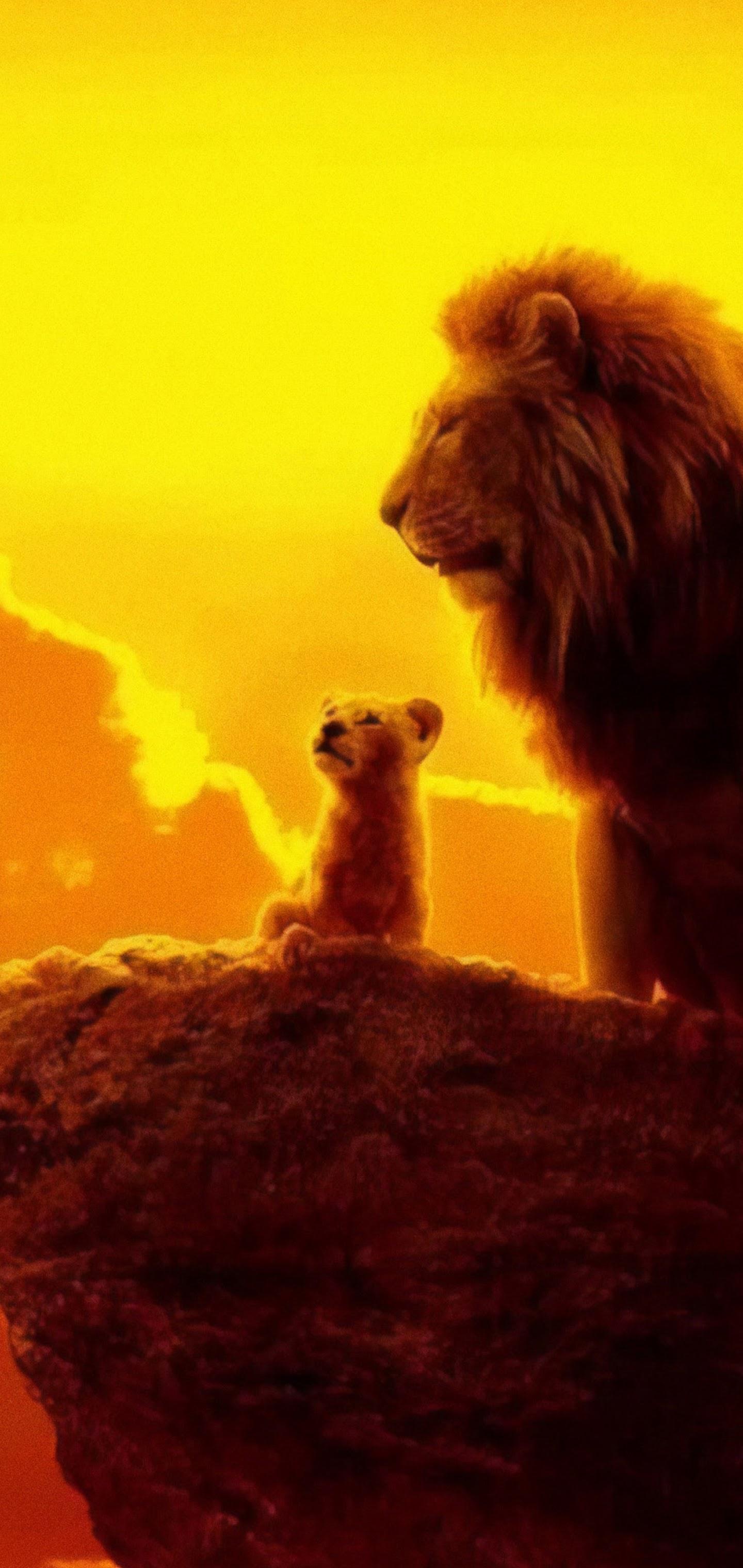 The Lion King 2019 Mufasa Simba 4k Wallpaper 19