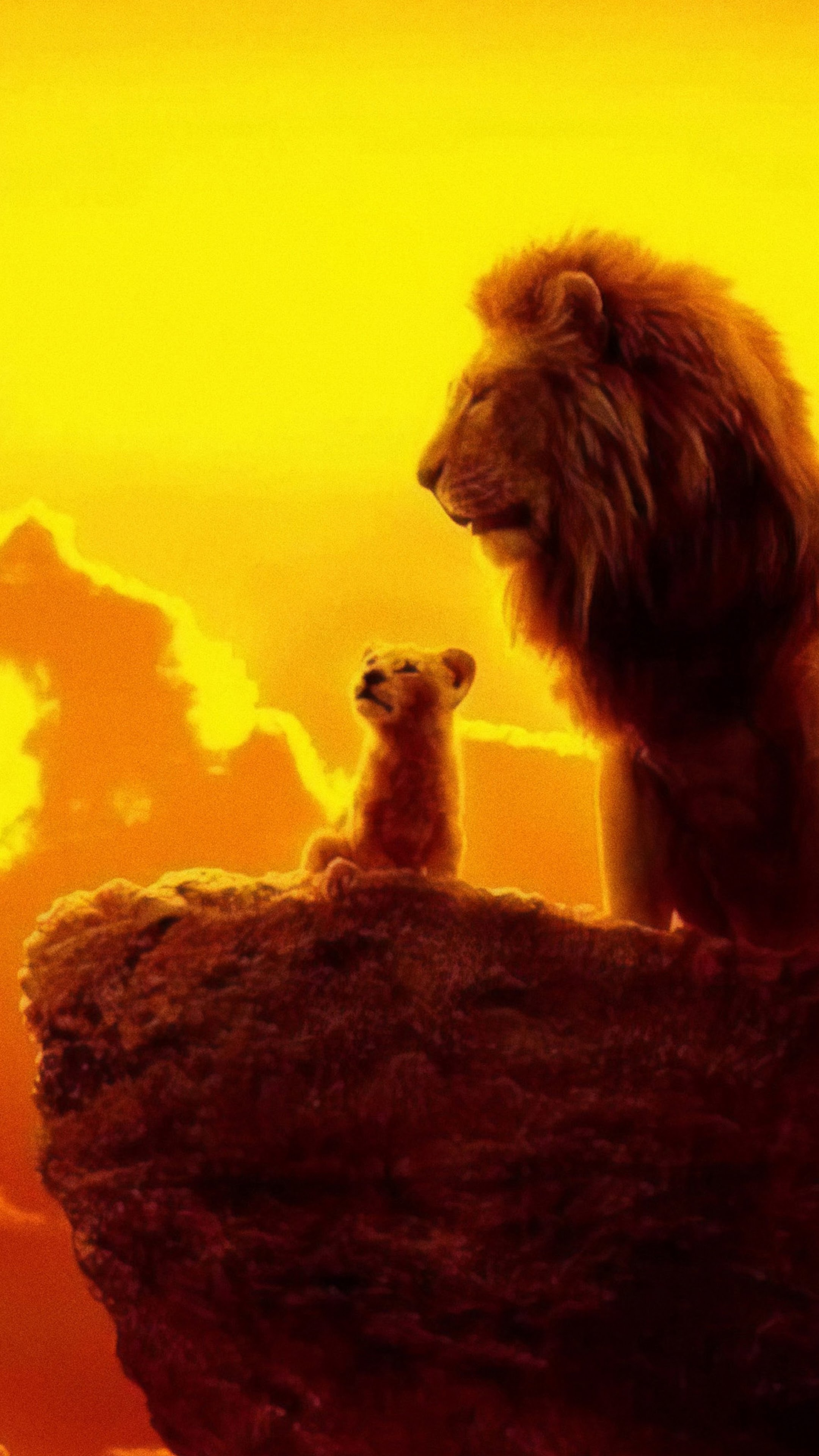 The Lion King 2019 Mufasa Simba 4k Wallpaper 19