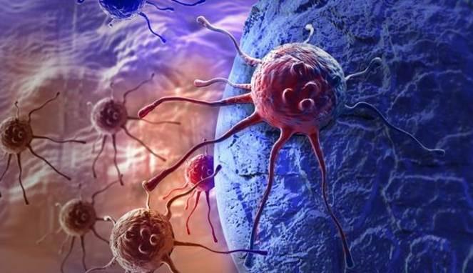 Menyebabkan Kanker