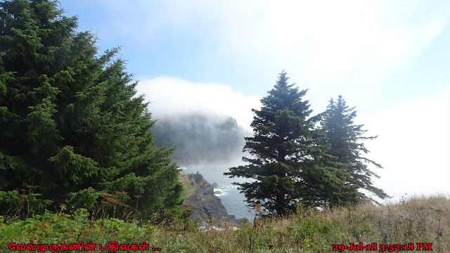 Hart's Cove Trail head Cascade Head