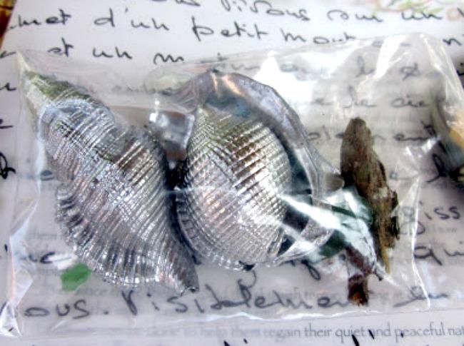shiny shell gift bag