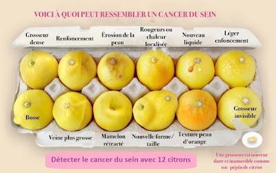 Détecter le cancer du sein avec 12 citrons
