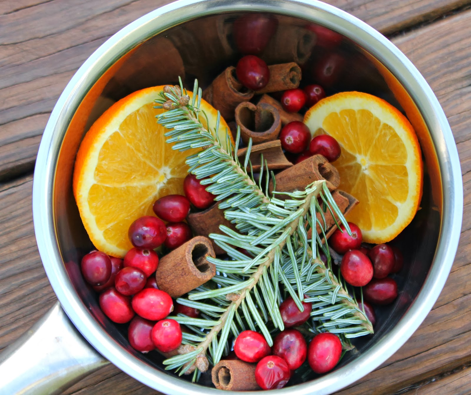 Christmas in a Pot {Stovetop Potpourri}
