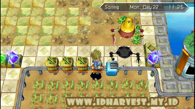 Cara Membuat Rail System Bekerja Dengan Baik di Harvest Moon: Innocent Life
