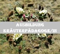 http://wegeinsich.blogspot.co.at/p/blog-page.html