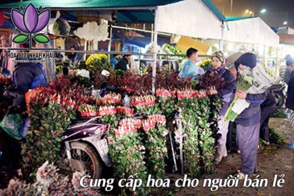 Thanh lieu hong B465-405
