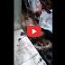 ช็อค! ! งูเหลือมเลื้อยเข้าบ้านตอนฝนตก (เช้ามาเจอเขมือบสุนัขไปครึ่งตัว) !! (ชมคลิป)