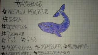 el juego de la ballena azul