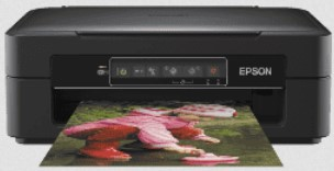 Epson XP 245 Drivers Download