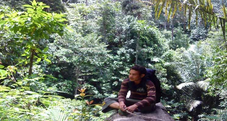 Suara Alam Dalam Keheningan