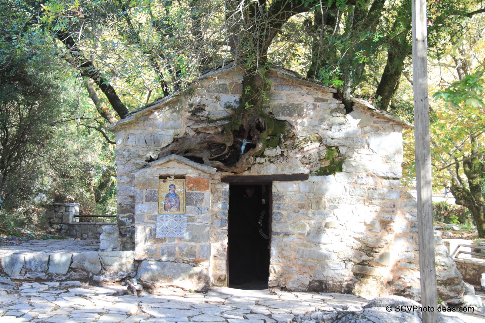 St. Theodora's chapel front door w/ oak tree