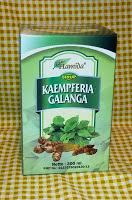 Jual Sirup Kaempferia Galanga Madu herbal luka lambung disurabaya