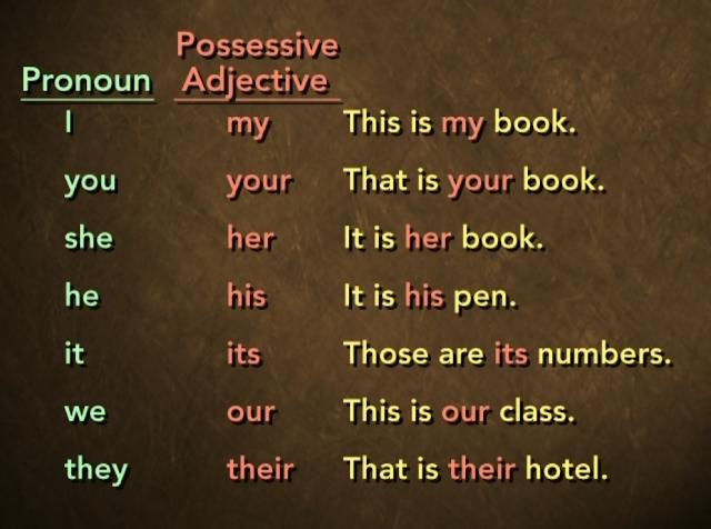 Possessive Adjective Dalam Bahasa Inggris
