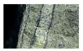 Jenis-Jenis Batuan Metamorf