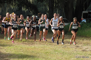 Cougar Cross Country Challenge
