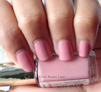 L'oreal Paris Color Riche Les Vernis Boudoir Rose (204)  & Top Coats Collection Matte (915) Review and Swatches