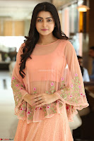 Avantika Mishra Looks beautiful in peach anarkali dress ~  Exclusive Celebrity Galleries 070.JPG