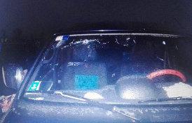 что не так с «допросом водителя» погибших в ЦАР журналистов