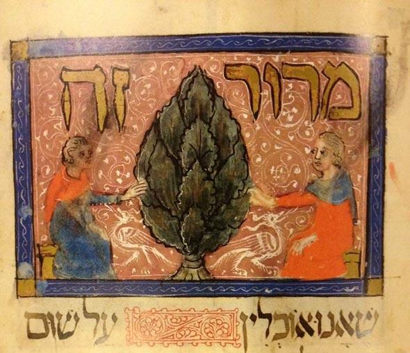Some Historic Haggadah Maror Trivia Elder Of Ziyon Israel News