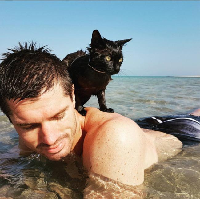 kitten loves to swim