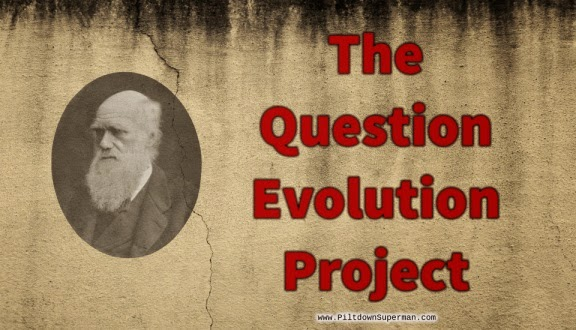 The Question Evolution Project logo