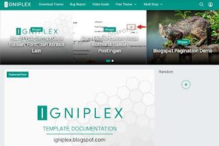 Preview Igniplex