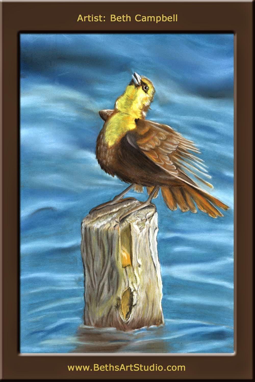 female black bird blackbird pastel sanded paper Beth Campbell wildlife painting