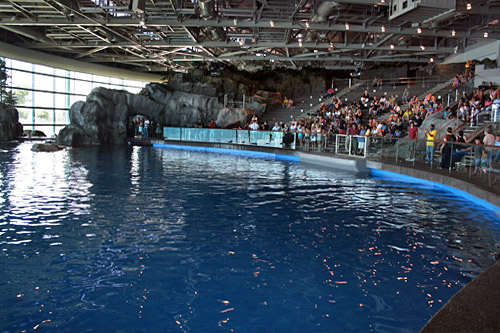 Shedd Aquarium in Chicago announced Wednesday its free days for Illinois residents, and plan to also extend hours on some of those days.