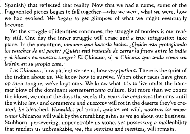 gloria anzaldua the simplest way to help acquire any wild language rhetorical analysis
