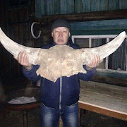 Житель Бурятии семь лет хранил в сарае череп доисторического животного