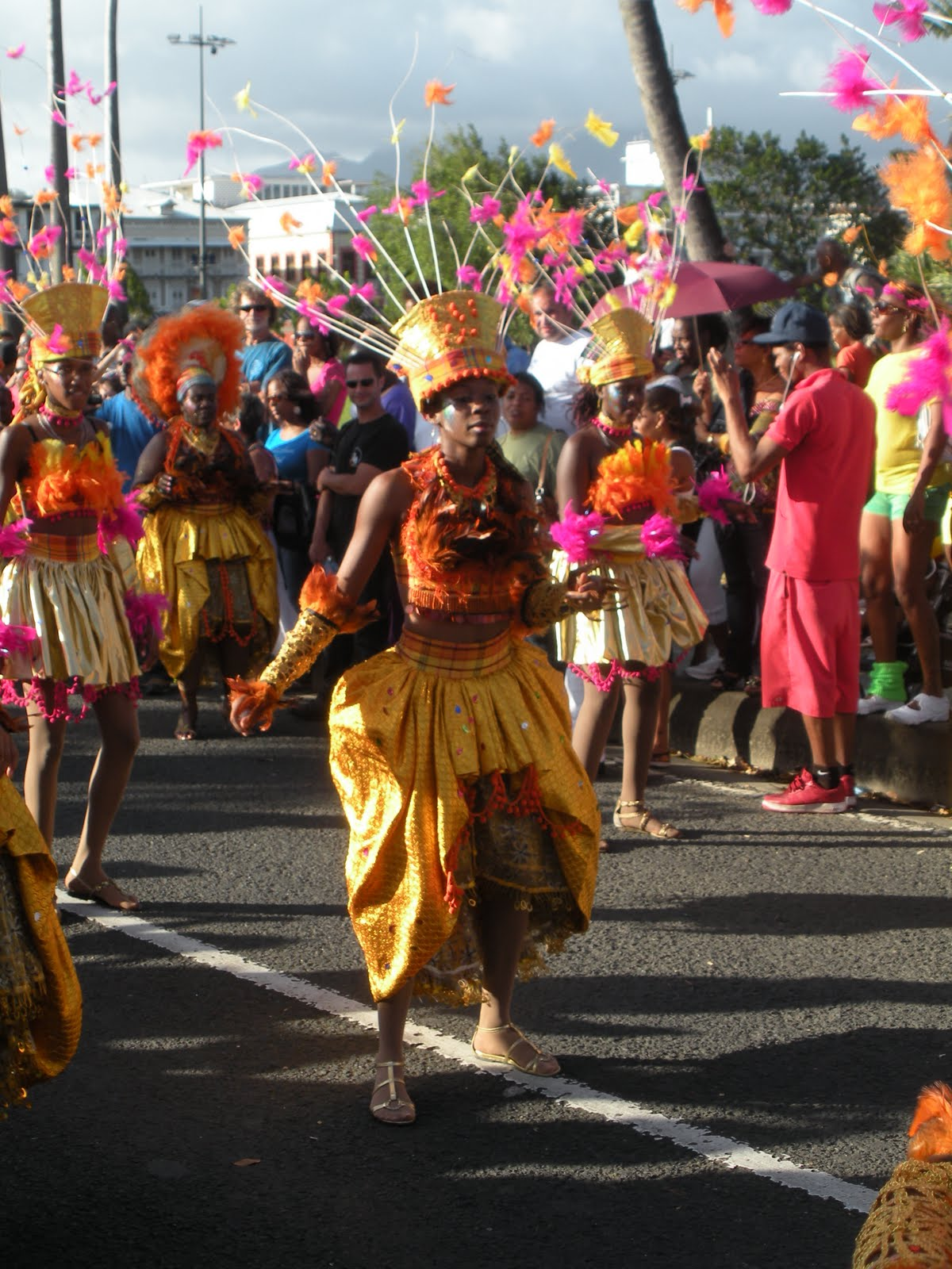 French Language and Caribbean Culture in Martinique