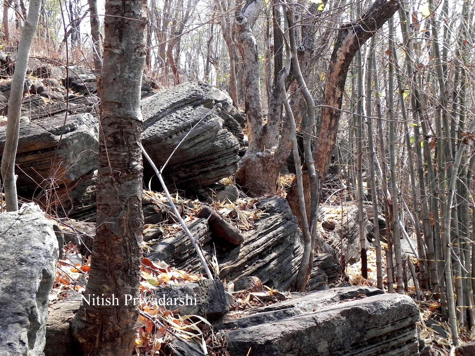 Environment and Geology: Beautiful Weathering structure on ...