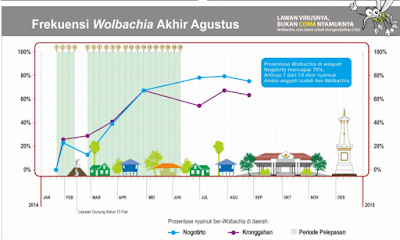 hasil penelitian nyamuk aedes aegeypti wolbachia sleman