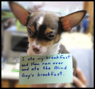 I ate my breakfast and then ranover and at the blind guy's breakfast
