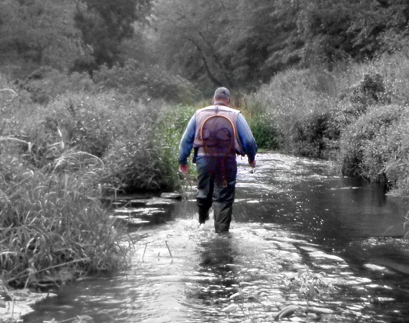 Adrift Stream