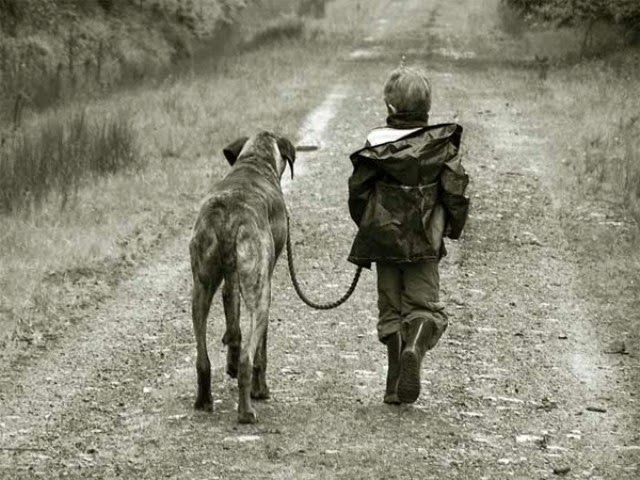 niños que fueron criados por animales.