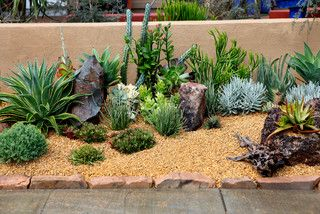 Desert Garden Ideas cool desert landscaping ideas with small path also short plants in the backyard Desert Garden Ideas