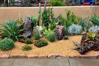 Desert Garden Ideas