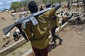 Armed Fulani Herdsmen In Benue state