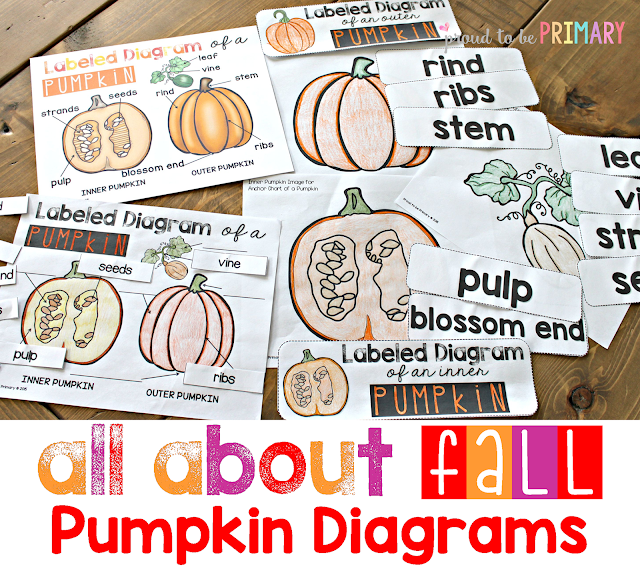 All About Fall {Non-Fiction ELA & Science unit} covers pumpkins, apples, leaves, and the changes, animals, harvest, and weather in fall.