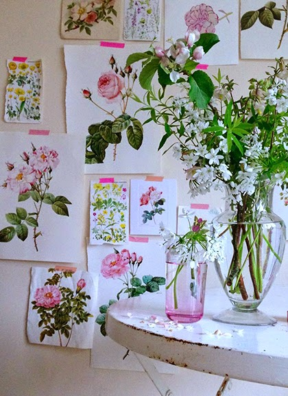 Botanical Prints and garden pickings by Selina Lake