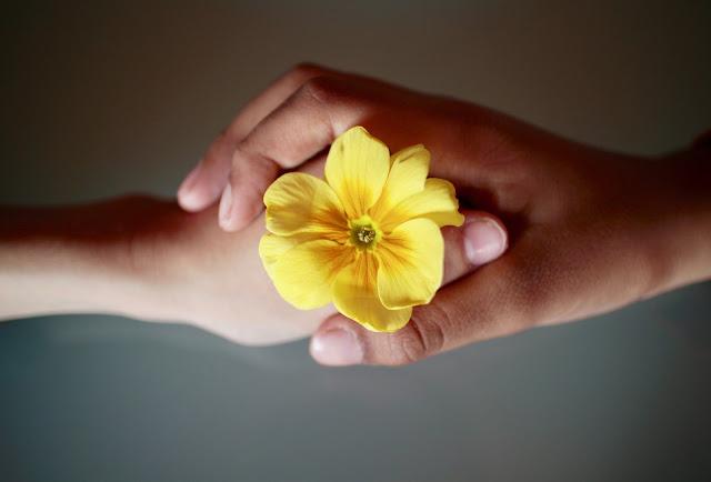 Mani di madre e figlio con fiore giallo